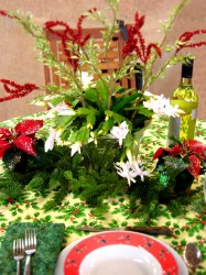 Holiday Centerpiece (Poinsettia and Christmas Cactus)
