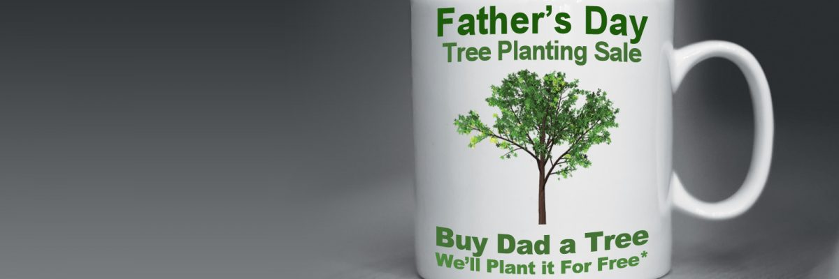 Father S Day Free Tree Planting Fort Collins Nursery
